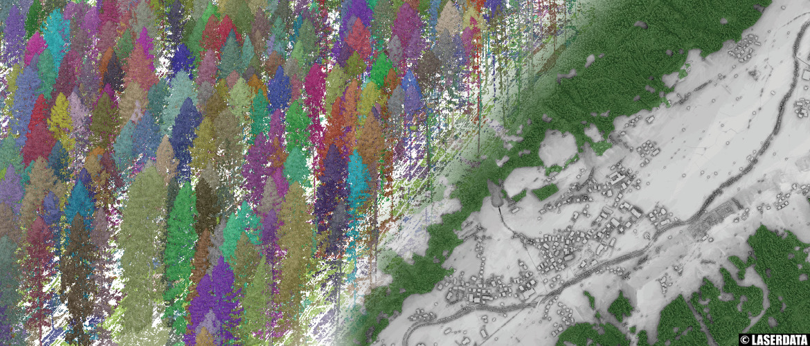 Vegetation mapping: single tree delineation and forest mask from ALS point cloud data